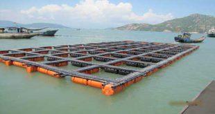 قفس دریایی پرورش ماهی