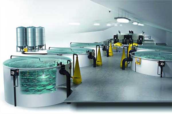 فروشگاه تجهیزات پرورش ماهی