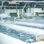 فروش دستگاه یخساز صنعتی