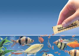 خرید آنلاین غذای ماهی